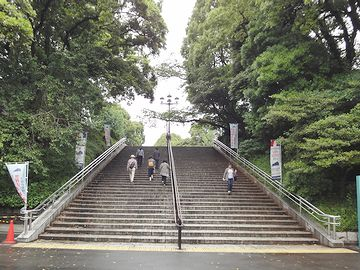 上野が山であることがよくわかります