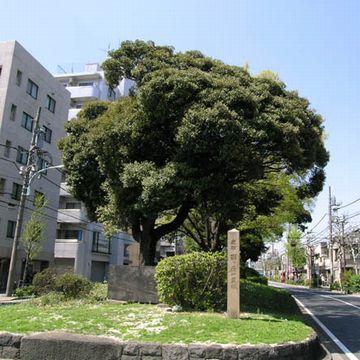 『日光御成道』の「西ヶ原」一里塚(東京都北区)