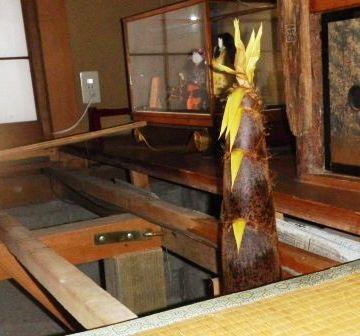 丼の真ん中から、タケノコがドカーンと抜き出てるとか?