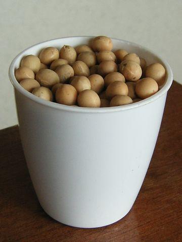 100グラムの大豆