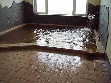 入浴料金です