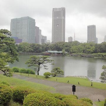 日本庭園と高層ビルの取り合わせ