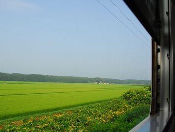 車窓は、見事に田舎です