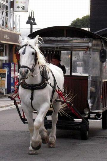 お馬さんに引かれた車
