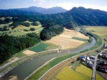 氾濫原は、農地化されることが多いですからね