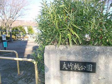 夾竹桃公園