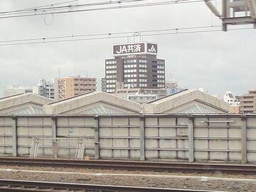 もう、東京とは景色が違います