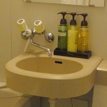 ロックアイスは、バスルームの洗面ボウルに置いてました