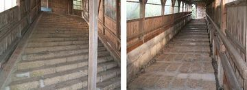 けっこうシュールな階段です