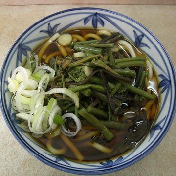"""山菜うどん""""。このお店の画像が、一番美味しそうでした。早稲田大学大隈講堂脇にある『はせ川』さん。"""
