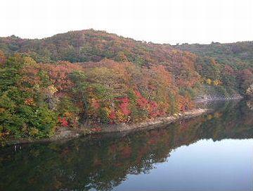 湖面に映えて、綺麗でしょうね