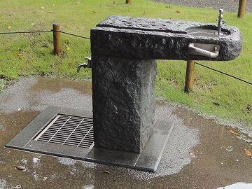 の水飲みは、本物の石?