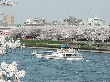幅は、隅田川の2倍くらいかな