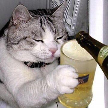 飲めるアルコールなら、喜んでいただく