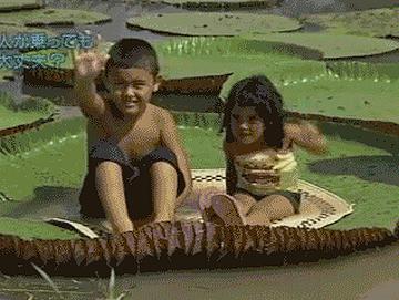 オオオニバスに乗る子供