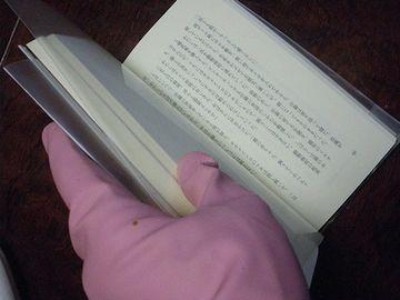 手袋して本読んでたものね