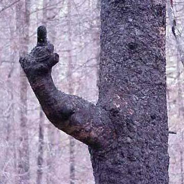 見知らぬ人が指をさす
