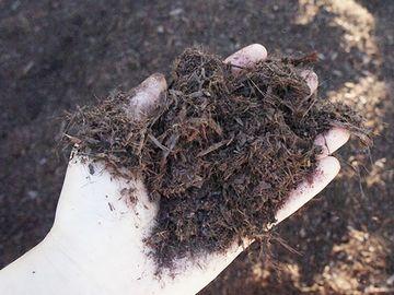 バーク堆肥
