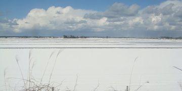 わたしが住んでるあたりは、ずーっと新潟平野でまっ平らなの