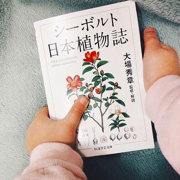 日本の植物を初めてヨーロッパに紹介した本