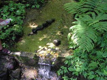 『泉神社の霊水』として、古くから知られてました