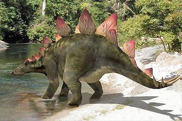 ステゴサウルスの突起