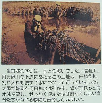 亀田郷と云って、昔は低湿地だったわけ