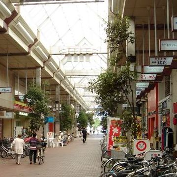 新潟市中央区古町通りのアーケードに植えてあります