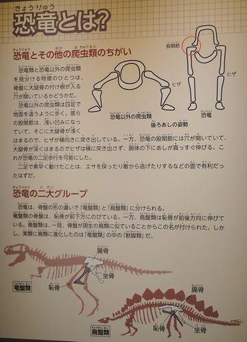 恐竜レクチャー