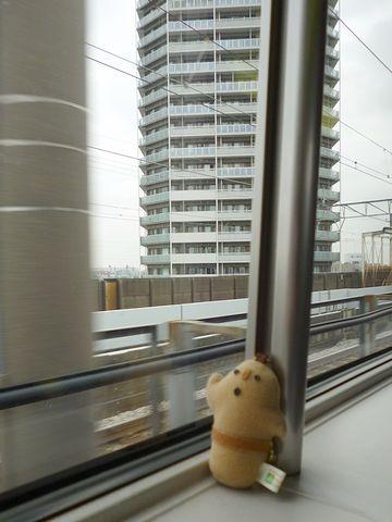高層ビルを背景に、「ハーさん」を撮影