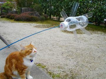 ペットボトルで作った風車が回ってるの、見たことない?