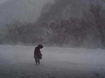 津軽の地吹雪