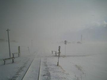 真冬はここを、地吹雪が通うわけだ