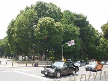 『東京国立博物館』を出ました