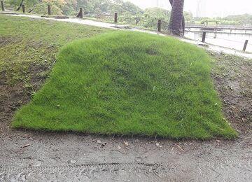 奇怪千万な芝貼り