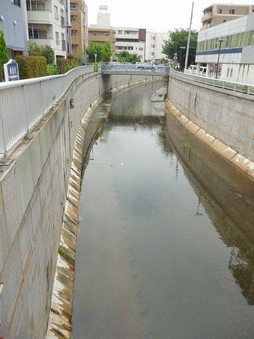 高いコンクリート護岸で囲われた、東京らしい川