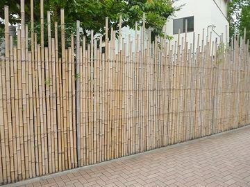 『アガパンサス』から続くのは、竹垣