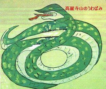 ウワバミって、あの蛇のウワバミですか?