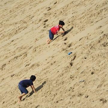 砂丘に駆けあがったから、見下ろせるんだな