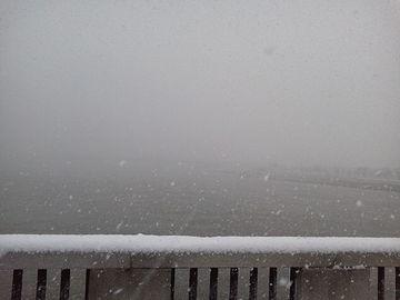 昨日の朝、萬代橋から撮った写真
