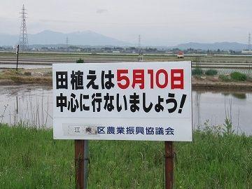 亀田郷の田んぼ