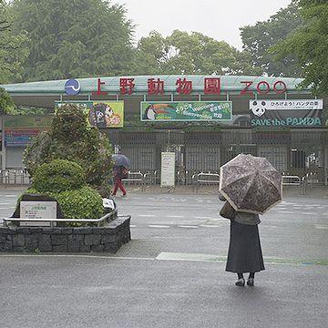 雨の中、野外施設の見学は、ちょっと大変