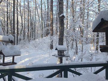 軽井沢の冬は、そうとう厳しいらしいですね