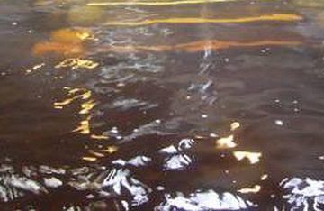 源泉は、透き通った茶色