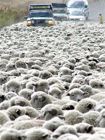万が一の渋滞なんかを考えれば……