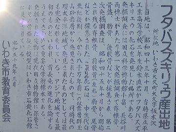 発見されたのは、1968(昭和43)年、福島県いわき市