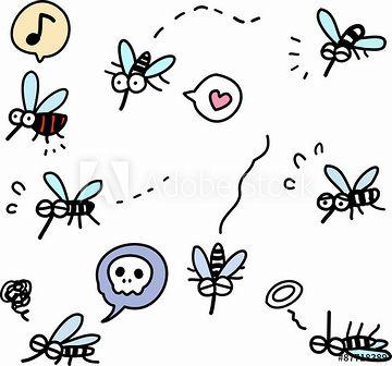 蚊がひどかったと思います