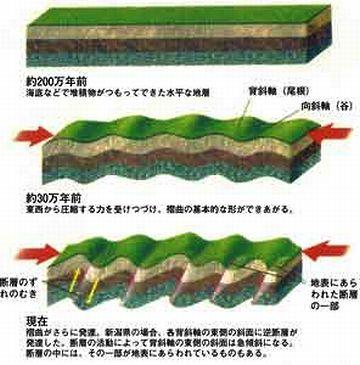 日本列島は、年に1センチずつ東西に縮んでるんだって