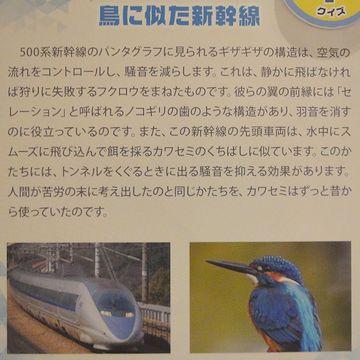 鳥に似た新幹線