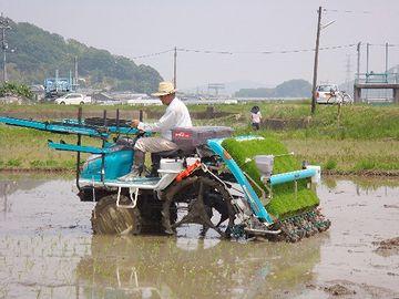 田植え機。これはスゴい発明だと思います。